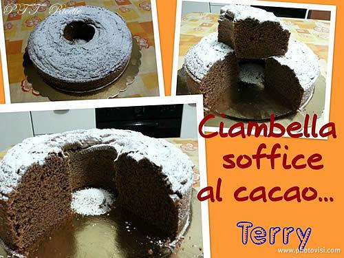 Ciambella soffice al cacao 1